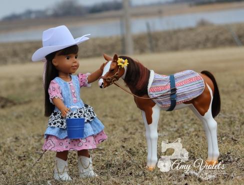 Ashlynn 1 horse